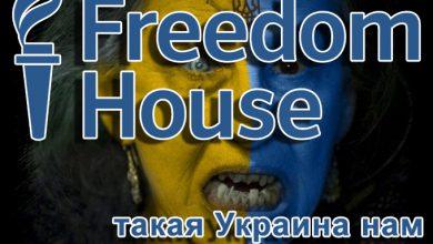 Photo of «Ах какие няшки!» — псевдо правозащитники умиляются киевскими нацистами