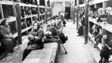 Photo of Европейские ценности: «Немецкие дети, увидев русских рабов, бросали в них камни»
