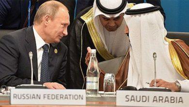 Photo of Лай саудовского пуделя