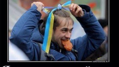 Photo of Киевские узурпаторы поняли — пора гасить быдло