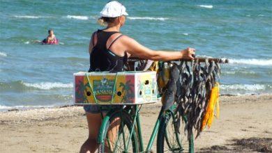 Photo of Бежавшие из Крыма заукраинцы торгуют вареной кукурузой на херсонских пляжах