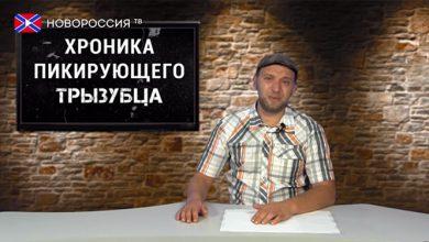 Photo of Время искать деньги. Хроника падающих вил №62