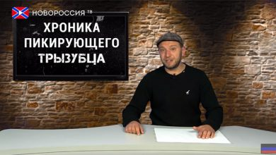 Photo of Праздничный фейерверк. Хроника падающих вил №63