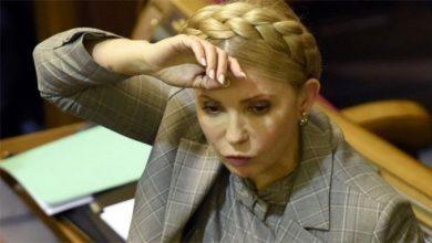 Photo of Поникшая Кыцюндер