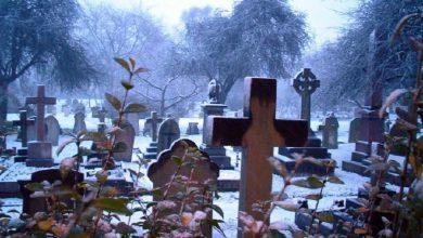 Photo of Украина нацистская: на 100 умерших всего 54 родившихся