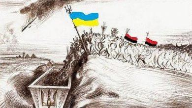Photo of Мясное место Украины в планах «наших западных партнёров»