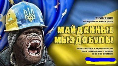 Photo of Про майдан, Украину, и украинцев