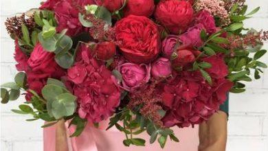 Photo of Розы: шикарные цветы для подарка!