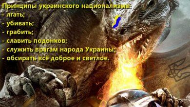 Photo of Украинские нацистские драконы ввели новые тарифы на газ