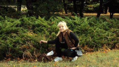 Photo of Нацистское Гестапо Порошенко искалечило 60-ти летнюю женщину