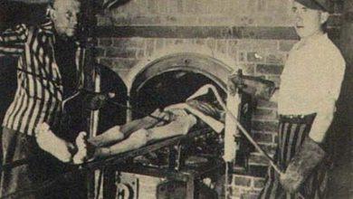 Photo of Гонения на русский язык – это предбанник Освенцима