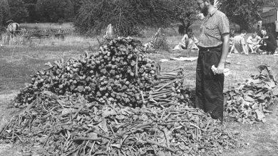 Photo of 75 лет резни в Гуте Пеняцкой