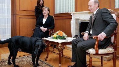 Photo of Меркель жестко потребовала не провоцировать Россию