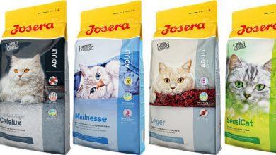 Photo of Josera Marinesse — покупаем сухой корм для кошек