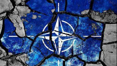 Photo of О мёртвом мозге НАТО