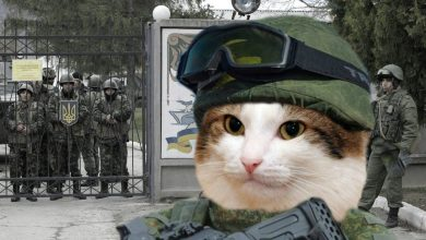 Photo of Крым должен праздновать День освобождения от оккупации Украиной